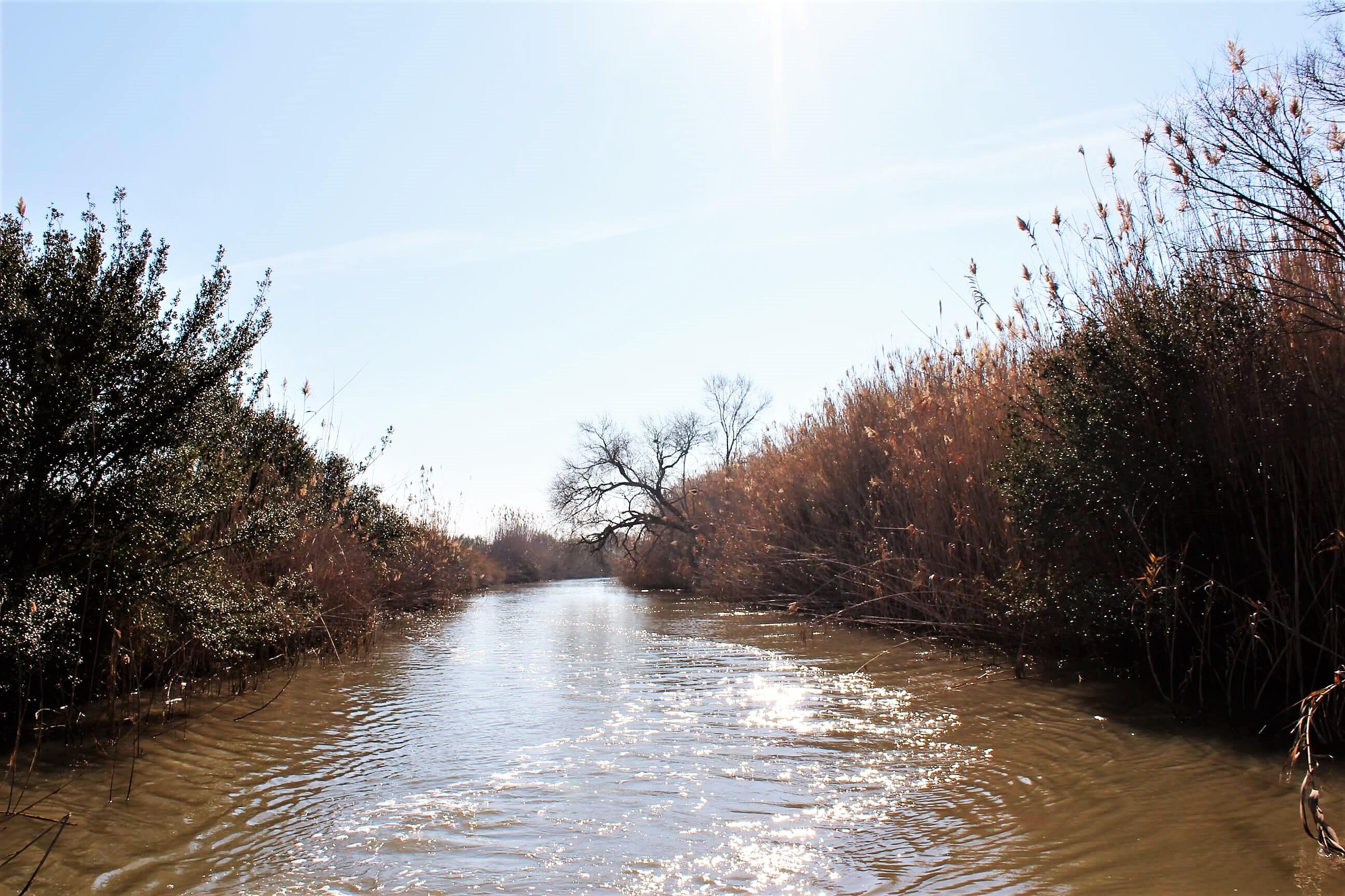 Canale di Acquarotta Lesina