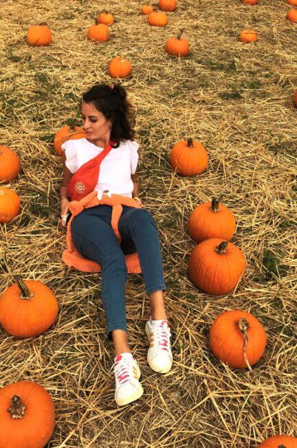 pumpkin patch giardino delle zucche