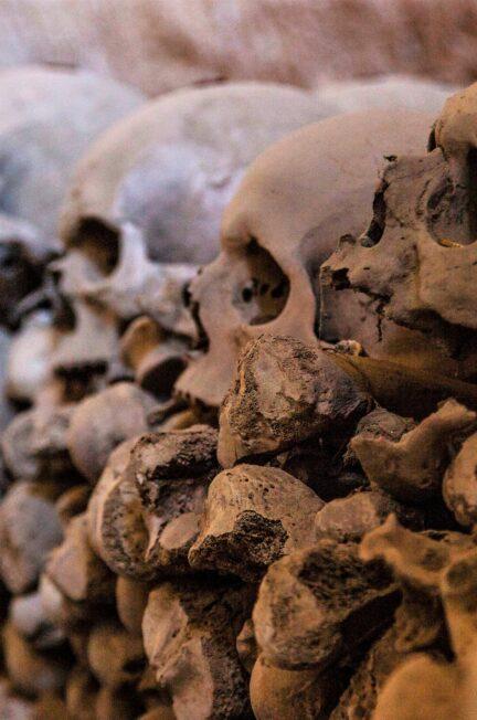 capuzzelle cimitero delle fontanelle rione sanità